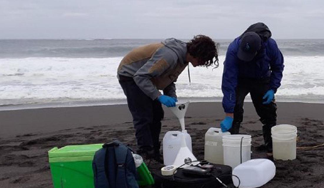 SMA de Ñuble: Fenómeno de Mareas Verdes no presenta riesgo ambiental