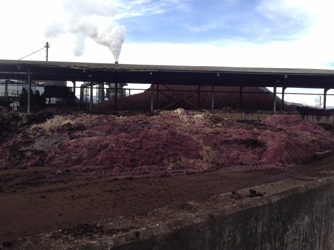 SMA instruye medidas provisionales por malos olores a Industrias Vínicas S.A. en Teno