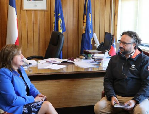 Superintendente De La Maza confirma prohibición del uso de leña húmeda en Coyhaique este invierno