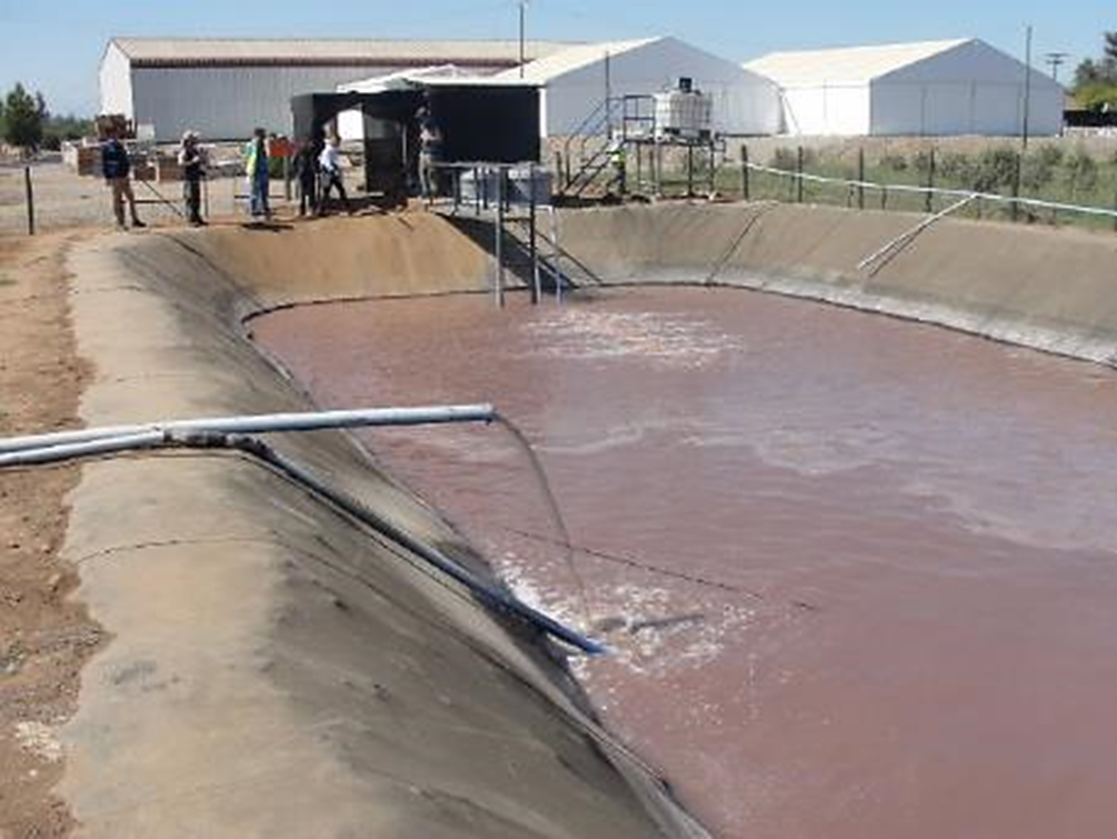 SMA Inició 7 Procedimientos Sancionatorios contra Viñas por Omisión y Deficiente Manejo de Residuos Líquidos (RILes)
